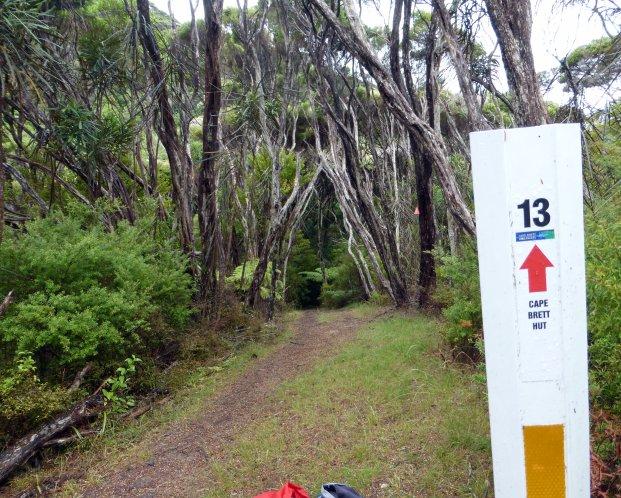 Path to Cape Brett